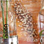 Mounted Herb Jar